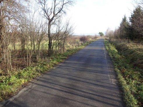 Zielona polana z drogą asfaltową 8