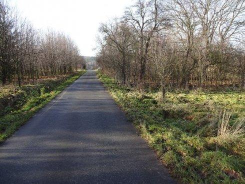 Zielona polana z drogą asfaltową 2