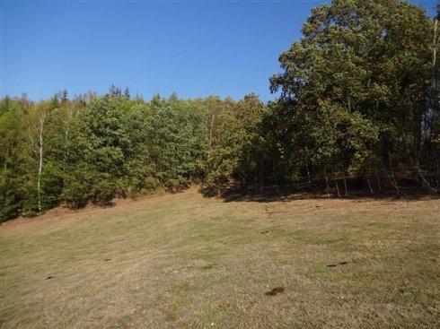 Działka z sąsiedztwem drzew 8